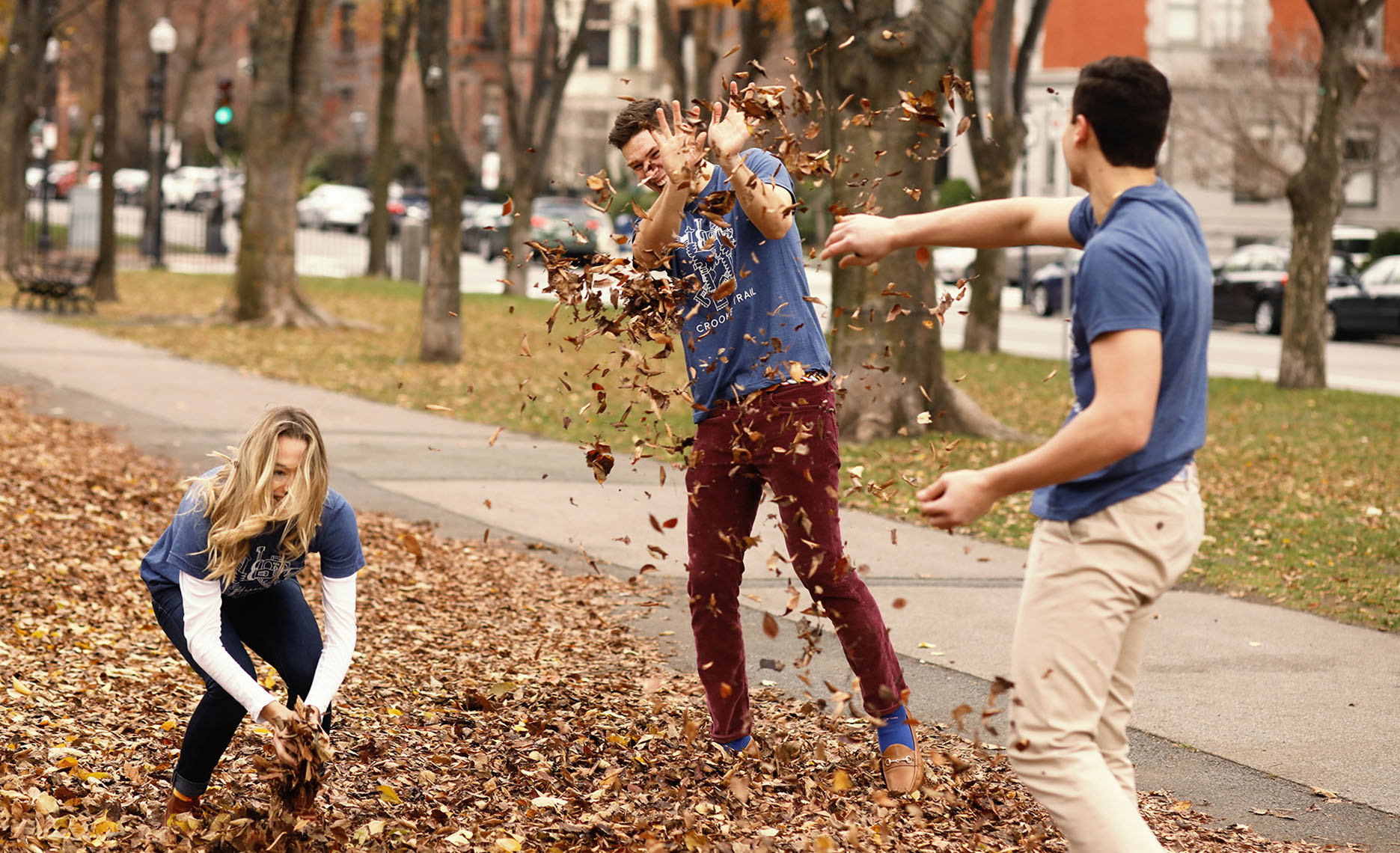 Autumn Leaf Fight